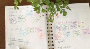 家事ノートと花びらマップで時間の見える化を