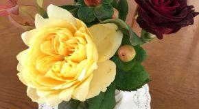晩秋に似合う薔薇と木の実が届いた