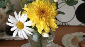 #Bloomee からお花届きましたよ。
