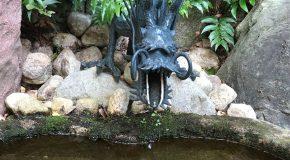 龍だらけの田無神社お詣りツアーのこと